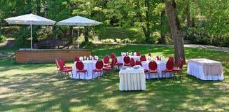 På sol- gröna tabeller för en skogglänta för en bröllopceremoni Fotografering för Bildbyråer
