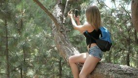 På solig dag härlig ung turist- går en flicka till och med skogen lager videofilmer