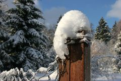 På staketet ner Royaltyfri Fotografi