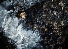 Is på stenar i lite vatten Fotografering för Bildbyråer