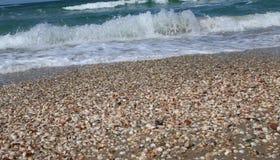 På stranden royaltyfria bilder