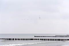 På stranden av Ahrenshoop Royaltyfri Foto