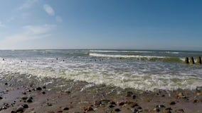 På stranden av Orzechowo baltiskt hav arkivfilmer