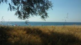 På stranden Fiumefreddo, Sicilien Arkivbilder