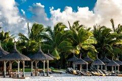På stranden Mauritius Island Royaltyfria Bilder