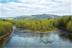 På taigafloden Royaltyfri Bild