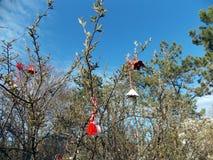 På trädet häng hantverk av barn royaltyfri foto