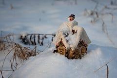 På trät på en kant där bor vintern i en izba (hus) 4 Arkivfoton