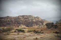 På väg till Petra Royaltyfri Fotografi