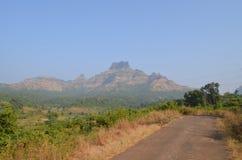 På vägen av det Chanderi fortet Arkivfoton