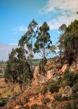 På vägen som klättrar berget royaltyfria foton