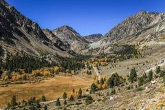 På vägen till den Yosemite nationalparken Kalifornien, USA Arkivfoton
