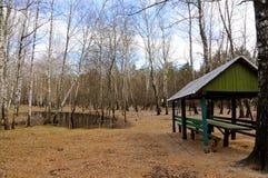 På våren tomt parkera där är kala björkar och en trägazebo Fotografering för Bildbyråer