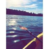 På vattnet Fotografering för Bildbyråer