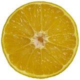 på vitt orange objekt för skivaabstrakt begreppbakgrund Gul orange skiva på vit bakgrund Plan mandarin royaltyfri bild