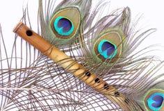 påfågel för bambufjäderflöjt Royaltyfri Foto