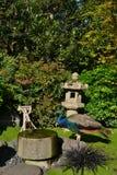 Påfågel i japanträdgård Royaltyfri Fotografi
