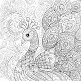Påfågel i zentanglestil Vuxen antistress färgläggningsida Royaltyfri Fotografi