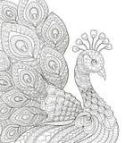 Påfågel Vuxen antistress färgläggningsida Svartvit hand dragit klotter för färgläggningbok Royaltyfri Bild