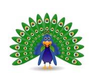 Påfågelillustration Royaltyfri Foto