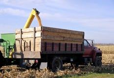 Påfyllande havre på lastbilen arkivfoto