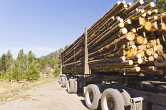 Påfyllningen av loggar in logga lastbilen Royaltyfria Bilder