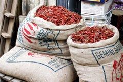 Påsar av den röda chili Arkivfoton