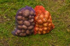 Påsar av potatisar och lökar Ny kantjustering Royaltyfri Fotografi