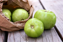 Påse av gröna tomater Fotografering för Bildbyråer