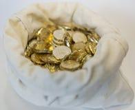 Påse av mynt på en vit bakgrund Royaltyfri Fotografi