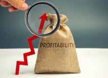 Påse med ordvinsten och en övre pil Hög ekonomisk effektivitet och profitableness Näringslivsutvecklingbedömning _ royaltyfria foton