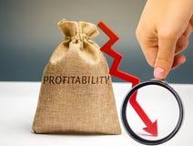 Påse med ordvinsten och ner en pil med en affärsman Låg ekonomisk effektivitet och profitableness Droppe i vinster royaltyfria foton