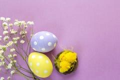 Påskägg, dekorativa hönor och blommor på en purpurfärgad backgro Royaltyfria Bilder