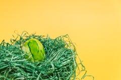 Påskägg i ett easter rede som göras av grönt gräs och gulingbakgrund Royaltyfri Foto