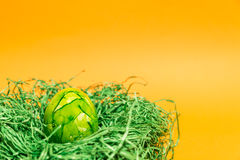 Påskägg i ett easter rede som göras av grönt gräs och gulingbakgrund Arkivfoto