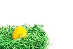 Påskägg i ett easter rede som göras av grönt gräs och gulingbakgrund Royaltyfria Foton
