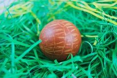 Påskägget målade naturlig färg av skallökarna Arkivbild