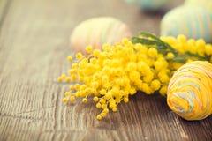 Påsk Färgglade ägg och mimosa Arkivfoto