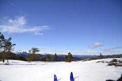 Påsk i berg Arkivfoton