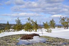 Påsk i berg Fotografering för Bildbyråer