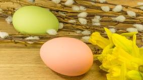 Påsk målade ägg med hängepilar royaltyfri fotografi
