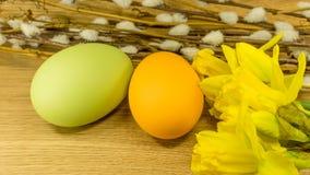 Påsk målade ägg med hängepilar royaltyfria foton
