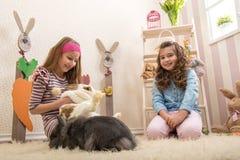 Påsk - små flickor som slår kaninerna, handbeta royaltyfria foton