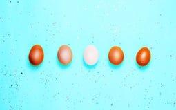 Påskbakgrund med ägg i linje på blå bakgrund royaltyfri fotografi