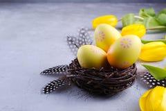 Påskbegrepp - dekorativt pilrede med dekorativa ägg, fjäder på grå bakgrund Copyspace arkivbilder