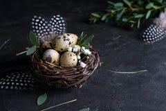 Påskbegrepp - dekorativt pilrede med vaktelägg, fjäder på mörk rostig bakgrund Copyspace royaltyfri fotografi