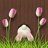 Påskbevekelsegrund, kaninbotten, rosa tulpan och nytt gräs på träbakgrund för mörk brunt, illustration stock illustrationer