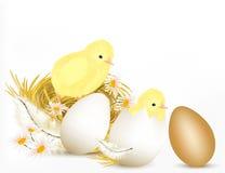 Påskdesignbakgrund med parar av gullig höna, ägg och cha stock illustrationer