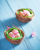 Påsken bygga bo med ägg och blommar garnering på blå bakgrund Royaltyfri Bild