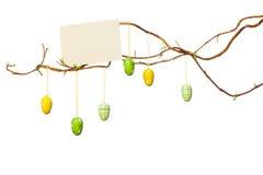 Påsken förgrena sig - med påskägg, tomt tecken/kort Arkivfoton